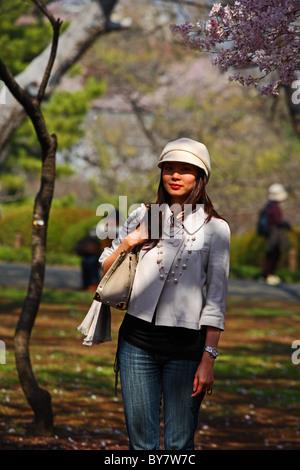 Japanese female poses for photograph beneath cherry blossom in Shinjuku Gyoen, Tokyo, Japan - Stock Photo
