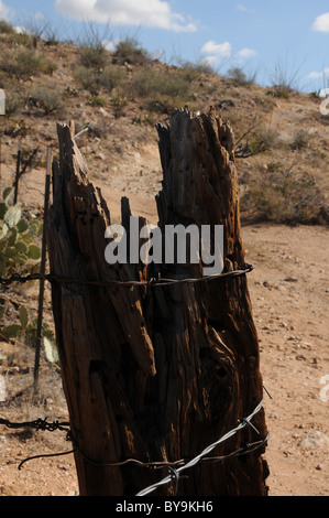 A weathered fence post strung with barbed wire stands in the Rincon Mountains, Sonoran Desert, Vail, Arizona, USA. - Stock Photo