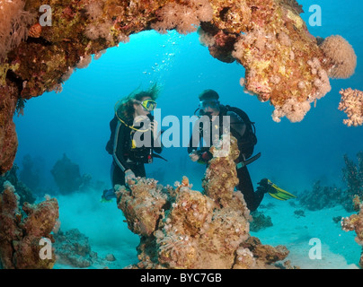 Pair scuba divers look at on coral cave - Stock Photo