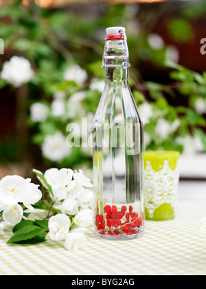 Red currants and water in bottle on outdoor table - Stock Photo