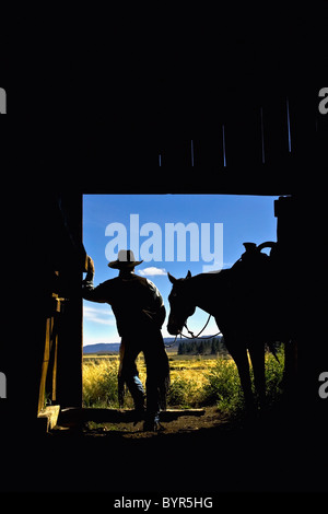 silhouette of a cowboy holding his horse's reins looking out reflecting on the day; seneca, oregon, united states - Stock Photo