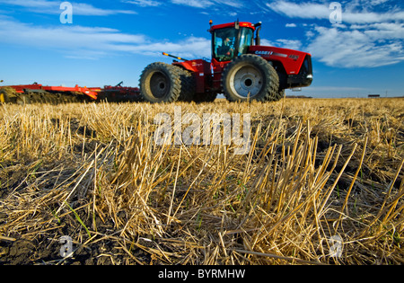 Close-up of wheat stubble with an out of focus tractor pulling cultivating equipment in the background / Manitoba, - Stock Photo