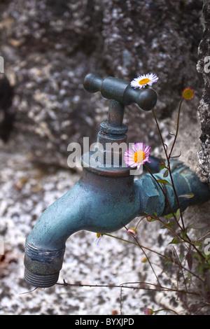 Garden Tap - Stock Photo