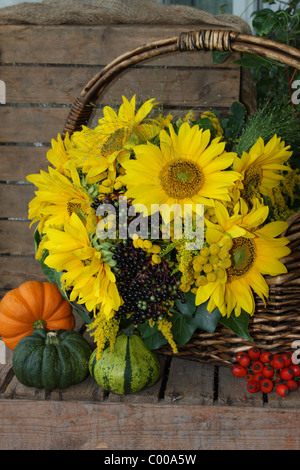 Herbstliches Stilleben, Sonnenblumen, Kuerbisse, Hagebutten, Autumn harvest, Still life, Sunflower, Pumpins, Rose - Stock Photo