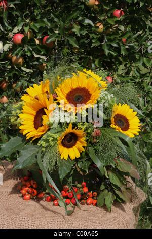 Herbstliches Stilleben, Sonnenblumen, Kuerbisse, Hagebutten, Autumn harvest, Still life, Sunflower, Pumpins, Rose - Stock Photo