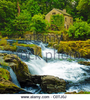 Salmon leap and old mill at Cenarth Falls on the river Teifi, Wales, UK - Stock Photo