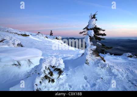 Winter snowy landscape in Ural mountains. Snow-covered trees in sunrise light. National park Taganay. Russia. - Stock Photo