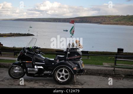 Three wheel motorbike with teddy bear on back, Newquay, Ceredigion, Wales, United Kingdom - Stock Photo