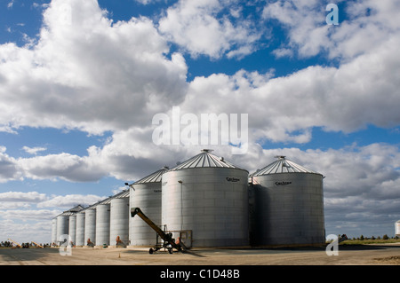 Wheat silos near Narrandera in New South Wales Australia - Stock Photo
