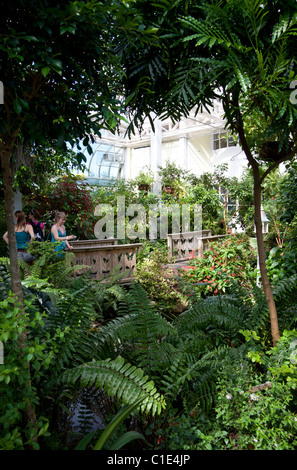 Interior of the Butterfly and Nature Conservatory, Key West, Florida, USA - Stock Photo