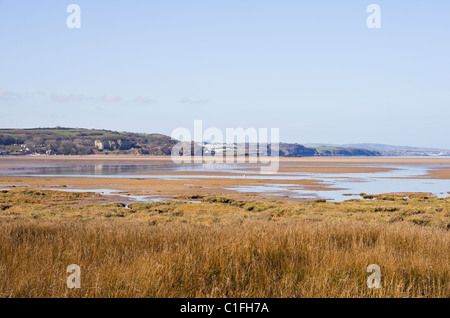 View across Red Wharf Bay salt marsh saltings in AONB. Pentraeth, Isle of Anglesey, North Wales, UK, Britain. - Stock Photo