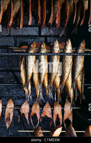 cured mackerels and fish fillets for sale at Baltic Sea in Mecklenburg- Western Pomerania, Germany - Stock Photo