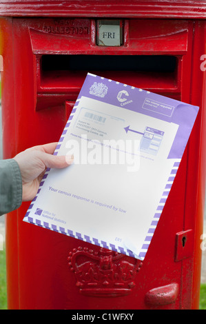 person posting completed census form in post box uk - Stock Photo