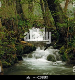 Bruehlbach mit Wasserfall und Stromschnellen beim Uracher Wasserfall im Maisental von Bad Urach, Ermstal, Schwaebische - Stock Photo