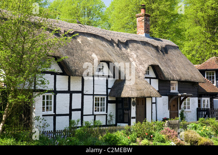 Thatched cottages, Hampshire. - Stock Photo