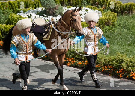 An Ahal Teke horse is paraded on national Turkmen Horse Day, Turkmenstan - Stock Photo