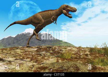 A Tyrannosaurus Rex dinosaur walks through his territory. - Stock Photo