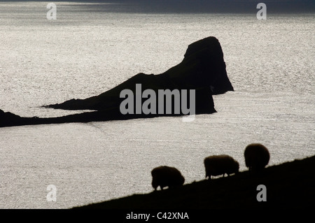 The Worms Head on the Gower Peninsula near Swansea, South Wales, UK. - Stock Photo