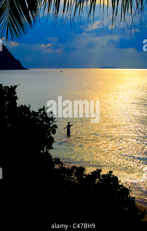 Fly fisherman in the Sunset under the Palm Trees - Stock Photo
