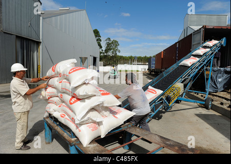 URUGUAY Ricemill Saman in Villa Sara, loading of rice for transport by railway for export to Montevideo port - Stock Photo