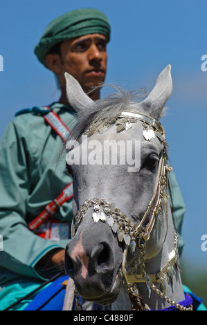 arabian Royal Cavalry of Oman in original costume on arabic horse while a public show performance in Munich, Germany - Stock Photo