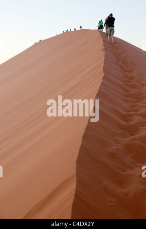 Tourists climbing dune 45 in the Namib desert - Namibia. Amongst the tallest sand dunes in the world. - Stock Photo