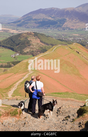 People with dogs walking on footpath up to Catbells in Lake District National Park near Keswick Cumbira England - Stock Photo