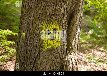Graffito / graffiti: Black and yellow radiation symbol (trefoil) spayed on on the trunk of a tree in Munich, Germany - Stock Photo