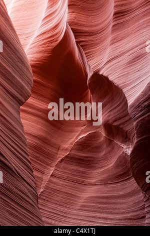 Sunlight illuminating sculpted curves and lines carved in red sandstone walls of Antelope Canyon by flooding and - Stock Photo
