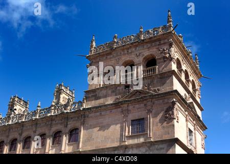 Monterrey Palace, Salamanca, Castile and Leon, Spain - Stock Photo