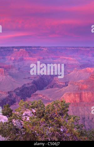 Alpenglow on storm clouds at sunset, Pima Point, South Rim, Grand Canyon; Grand Canyon National Park, Arizona - Stock Photo