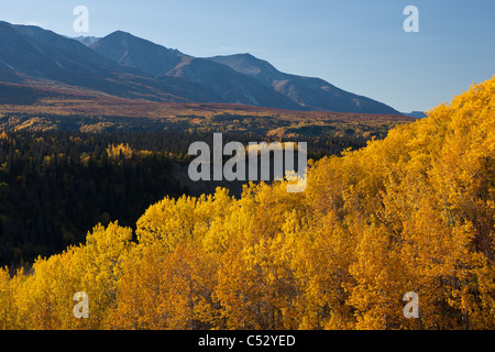 Scenic Autumn view of trees along the Alaska Highway in the Tatshenshini-Alsek Wilderness, Yukon Territory, Canada - Stock Photo