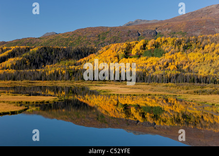 Scenic view of wetlands Autumn colors along the Alaska Highway between Haines and Haines Junction, Yukon Territory, - Stock Photo