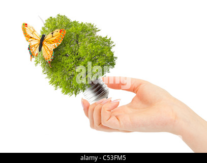 Hand holds green tree in light bulb. Alternative energy concept - Stock Photo