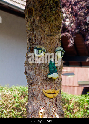 Baumgesicht in Bauerngarten, Sasbachwalden, Schwarzwald, tree face in Sasbachwalden, Black Forest - Stock Photo
