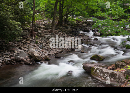 Oconaluftee River in Great Smoky Mountains National Park, on the North Carolina side of the park on an overcast - Stock Photo
