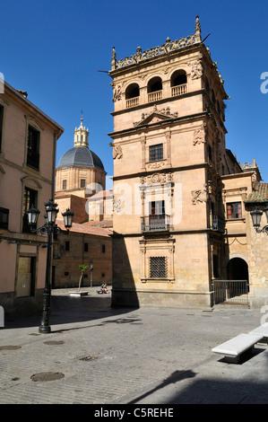 Europe, Spain, Castile and Leon, Salamanca, View of Palacio de Monterrey - Stock Photo