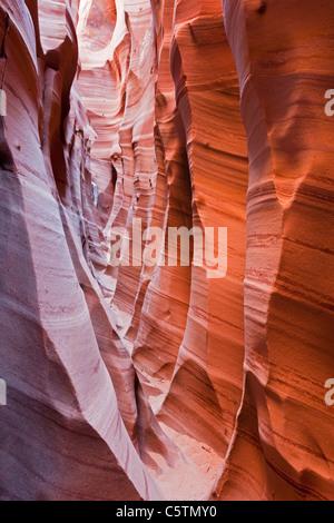 USA, Utah, Grand Staircase Escalante National Monument, Zebra slot, close-up - Stock Photo