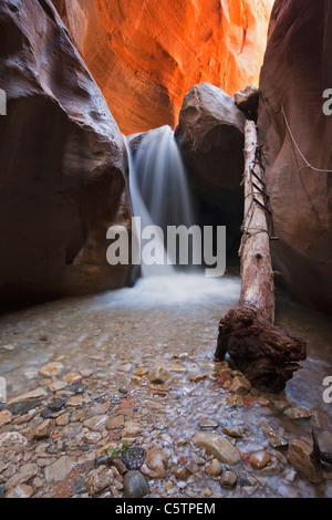 USA, Utah, Slot Canyon, Waterfall, Kanarra Creek - Stock Photo