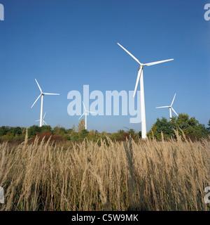 Germany, Rüdersdorf near Berlin, Wind wheels in field - Stock Photo