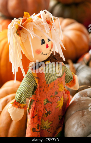 An autumn,Thanksgiving, or Halloween October rag doll around pumpkins in the vertical format. - Stock Photo