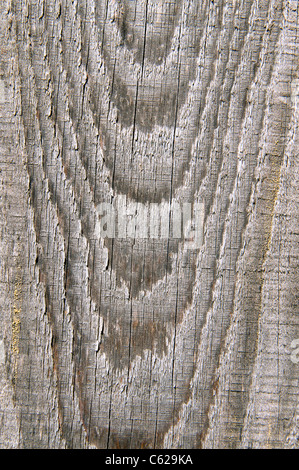 High resolution wooden background - Stock Photo