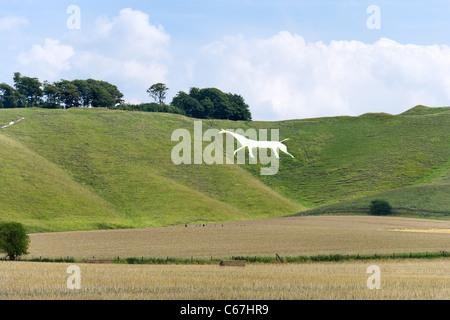 The Cherhill White Horse, Cherhill Down, Wiltshire, England, UK - Stock Photo