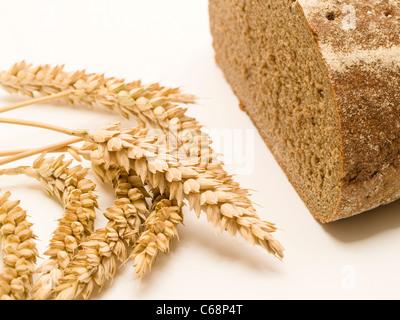ein halbes Schwarzbrot, davor liegen Weizenähren | one halve Brown Bread, in front are wheat ears - Stock Photo