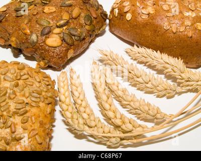 verschiedene Brötchen, davor liegen Weizenähren | different rolls, in front are wheat ears - Stock Photo