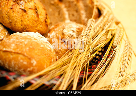 Wholegrain Bread and Buns with ears of wheat and barley - Stock Photo