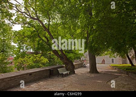 Tallinn, World Heritage old capital city, Estonia. - Stock Photo