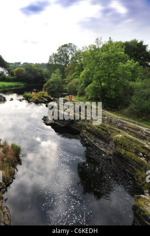 The River (or Afon) Teifi from Cenarth Bridge forming the border between Carmarthenshire and Ceredigion in West - Stock Photo