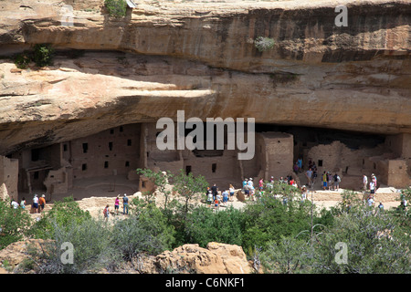 Spruce Tree House cliff dwelling at Mesa Verde National Park - Stock Photo