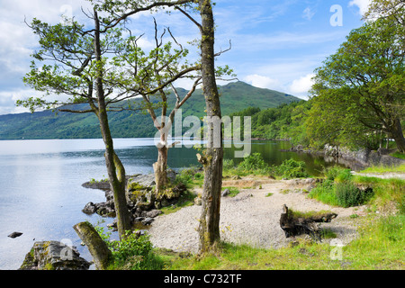 View over the loch on the A82 north of Luss on the west bank of Loch Lomond, Argyll and Bute, Scotland, UK - Stock Photo